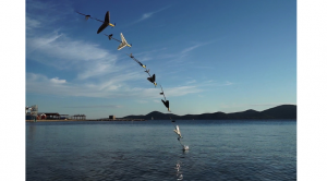 Drona care se scufundă și sare din apă ca să zboare