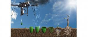 Metodă de plantare a copacilor prin tehnologia dronelor