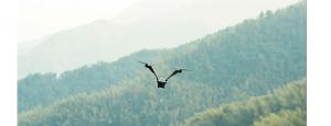 V-Coptr Falcon, drona în formă de V cu două rotoare