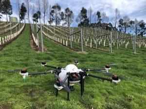 Dronele inteligente, un rol important pentru agricultură