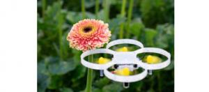 Tehnologia UAV și lupta contra dăunătorilor din sere (2)