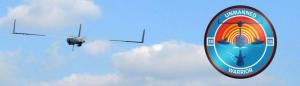 Utilizarea sistemelor fără pilot (UAS) în marina militară