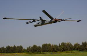BlueBird are comandă din Europa pentru drone VTOL
