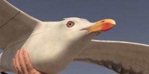 Supraveghere discretă și inedită cu drone-pasăre unice