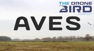 Drone Bird Company oferă servicii cu un caracter aparte