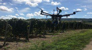 Drone și tehnologie pentru culturile de viță-de-vie (1)