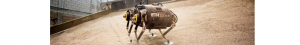 Robot care va sări peste denivelările solului marțian (2)